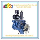De Leiding van de Dieselmotor van de Reeks van Weichai Wp6 voor de Markt van Zuid-Azige