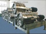 Chaîne de fabrication de haute qualité de pulpe/purée de mangue