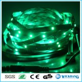 2835 lumière de bande imperméable à l'eau neuve de dc 12V 5m DEL de SMD 60LED/M