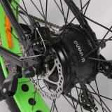 Banheira de venda de bicicletas eléctricas pneu de gordura com 48V motor de 750 W