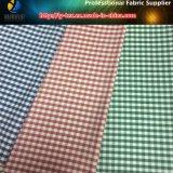 Ткань тафты полиэфира покрашенная пряжей, проверки проверки Vichy, зеленой/белой