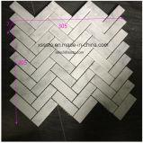 Mosaico di bianco di Herrigbone Bianco Carrara