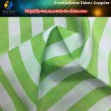 Il filato ha tinto il tessuto di Shirting, tessuto della camicia di T/C, tessuto dell'assegno