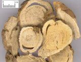 살균 약 Sophora Flavescens 자연적인 추출 Matrine