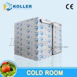 Kühlraum 20cbm für das Speichern des Block-Eises/des Gefäß-Eises/des Flack Eises/des Würfel-Eises