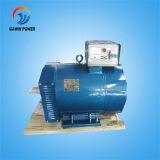 St 10kw Single-Phase 발전기 발전기