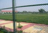 学校の運動場9のゲージのダイヤモンドの穴PVC上塗を施してあるチェーン・リンクの囲うこと