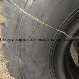 두 배 동전 상표 타이어 1400-20년 Dongfeng 군 타이어 편견 타이어
