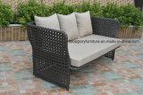 Modern Leisure Outdoor Furniture Rattan Garden Wicker Sofa (TG-7002)