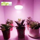 O bulbo do diodo emissor de luz cresce claro para plantas frondosas