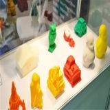 Модель PLA ABS печатание нестандартной конструкции 3D пластичная