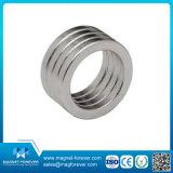 Magnete di anello permanente di NdFeB della terra rara neo