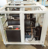 Tipo refrigerador del desfile de la importación de la fabricación de China de agua