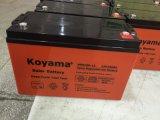 12V 100Ah 3kw système PV CYCLE profond100-12 Batterie Gel NPS