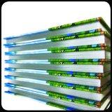 四色刷のハードカバーのCDボックスカスタムCD箱の荷箱の印刷