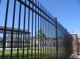 Black Powder Coated High Security Decorativo soldado ornamental Steel Fencing