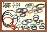 Giunto circolare con materiale differente (silicone, NBR, FKM) e colore (il nero, saltato, azzurro, rossi)