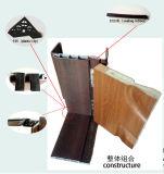 Дружественность к окружающей среде Композитный пластик из светлого дерева WPC безопасности двери