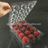 Haustier-freier Nahrungsmittelblasen-Kasten der Wachsbeere