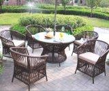 Meubles en rotin de loisirs de plein air Table-19