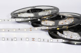 Luz de la cuerda de la decoración 24V LED, tira multicolora RGB 5050 del LED con el Ce RoHS