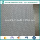 Resistencia a altas temperaturas Poliéster Espiral Secadora Tela de malla para la fabricación de papel / secadora Pantalla de malla