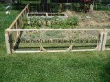 Reticolato esagonale galvanizzato della rete metallica per la gabbia del cane del coniglio del pollo