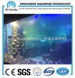 Prix acrylique matériel acrylique transparent personnalisé de projet de réservoir de joint