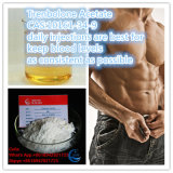 99% Reinheit Trenbolone Azetat-Puder-Schleife für zunehmenmuskel-Masse