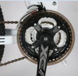 36V, 10.4h Vélo électrique à moteur motorisé Foldable Mountain E
