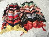 Бюстгальтер повелительниц Китая верхний Gracer использовал джинсыы США одежды используемые типом
