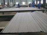 Pijp van het Roestvrij staal van ASTM A312 TP304L de Naadloze