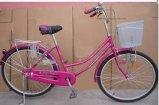 Bicicletta della città