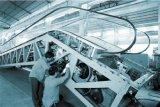 Escadas rolantes de estrutura de metal de alta força