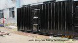 Generador de biogás en contenedores de 80 kw/CHP para un cliente francés