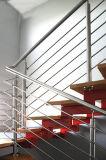 Balaustra dell'acciaio inossidabile delle inferriate della scala dell'acciaio inossidabile per il balcone