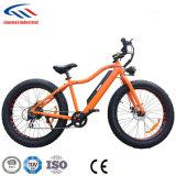 bici eléctrica gorda del motor sin cepillo 250-350W