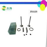 Assy da válvula do motor Diesel Zs1125 de Changzhou para cultivar