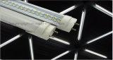 Superbright LED 광원을%s 가진 LED T8 관
