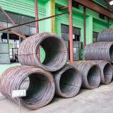 AISI304 de Bal van het Staal van het Kogellager van het roestvrij staal
