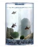 Zylinder-Frischwasseracrylaquarium-Minibecken