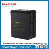 Der Golf-Karren-Batterie-6 des Volt-6V Solarbatterie Batterie-Golf-der Karren-335ah