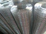 Rete metallica del ferro dopo la saldatura