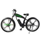 뚱뚱한 타이어 바닷가 전기 자전거 또는 Bycicle/Ebike를 비 접히는 산 전기 자전거