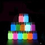 Fulgor de néon de 12 cores no pigmento luminoso do pó escuro