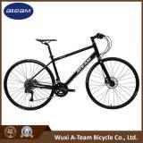 جيّدة سعر [موونتين بيك] [سرم] عن طريق [سنترو] 2*10 لياقة درّاجة ([فس4-10])