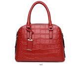 Borse delle coperture delle donne di modo delle borse delle signore di marche (WDL0880)