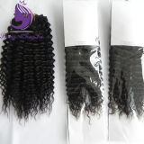 Kinky Curly humanly Virgin Hair Weaving