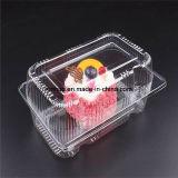 Изготовленный на заказ коробка пластмассы PP/PVC/PS/Pet устранимая Bento Китая