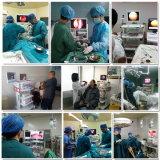 Luz endoscópica médica del frío LED para el Laparoscope 80 vatios